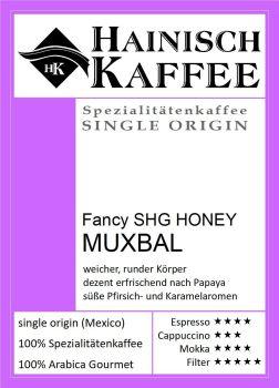 Mexico Fancy SHG Honey Muxbal (250g)