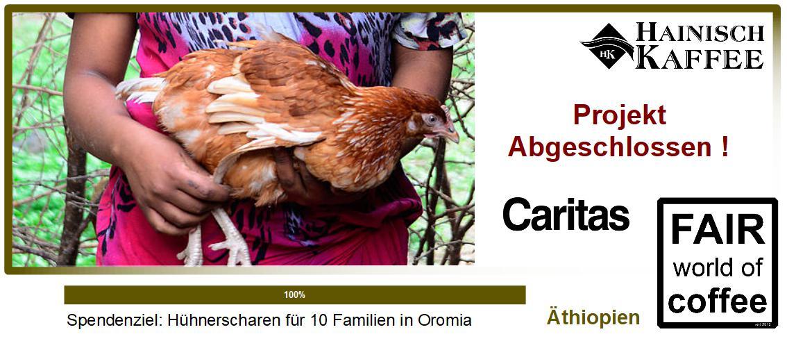 Projektbild Hühnerschar