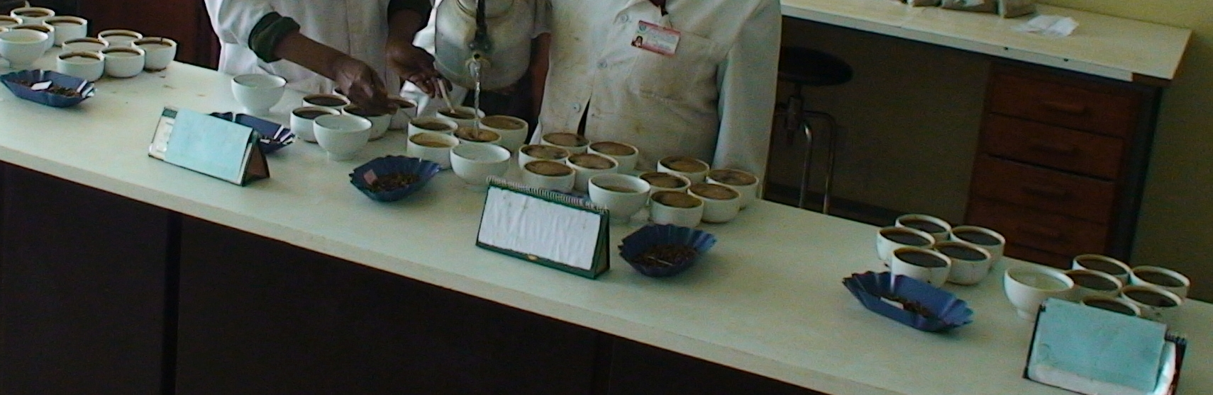 coffee cupping Vorbereitung
