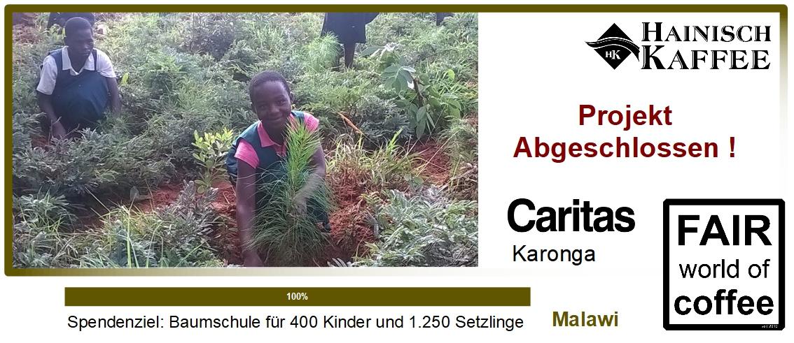Projektgrafik Baumschule in Malawi