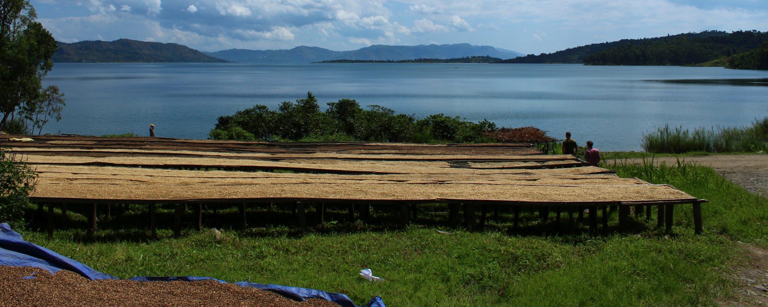 Rwanda Sake See